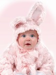 Pink Cottontail Bunny Series